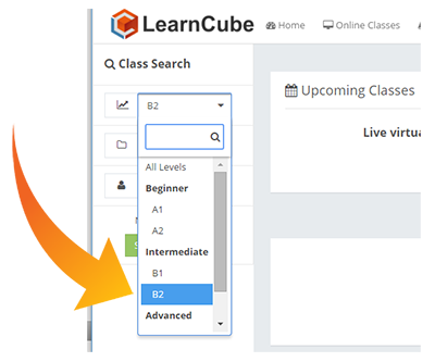 learncube-search_by_level_filter